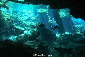 Diving in the Cenotes, Mexico
