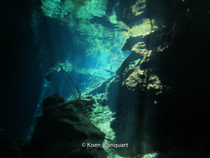 Light in the Cenotes
