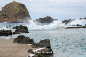 Swimming in the Natural Pools of Porto Moniz brings you close to the breaking waves.