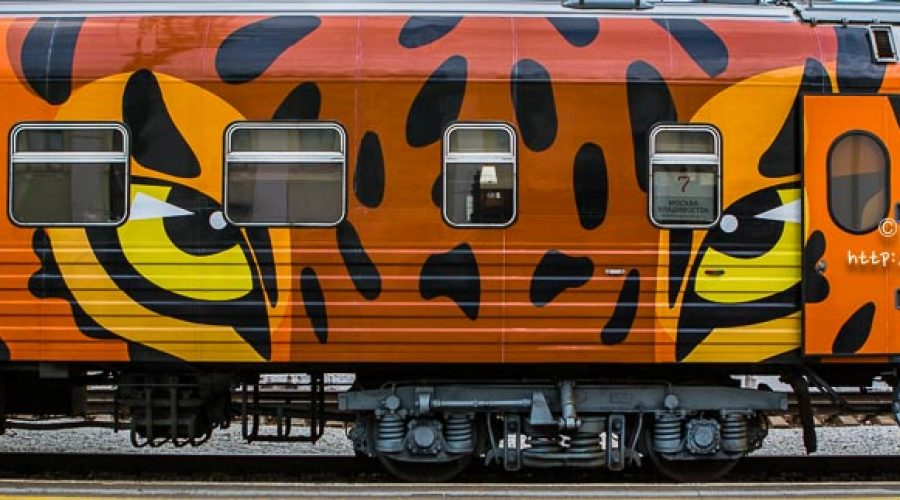 Train with Tiger Print – Yekaterinburg to Irkutsk