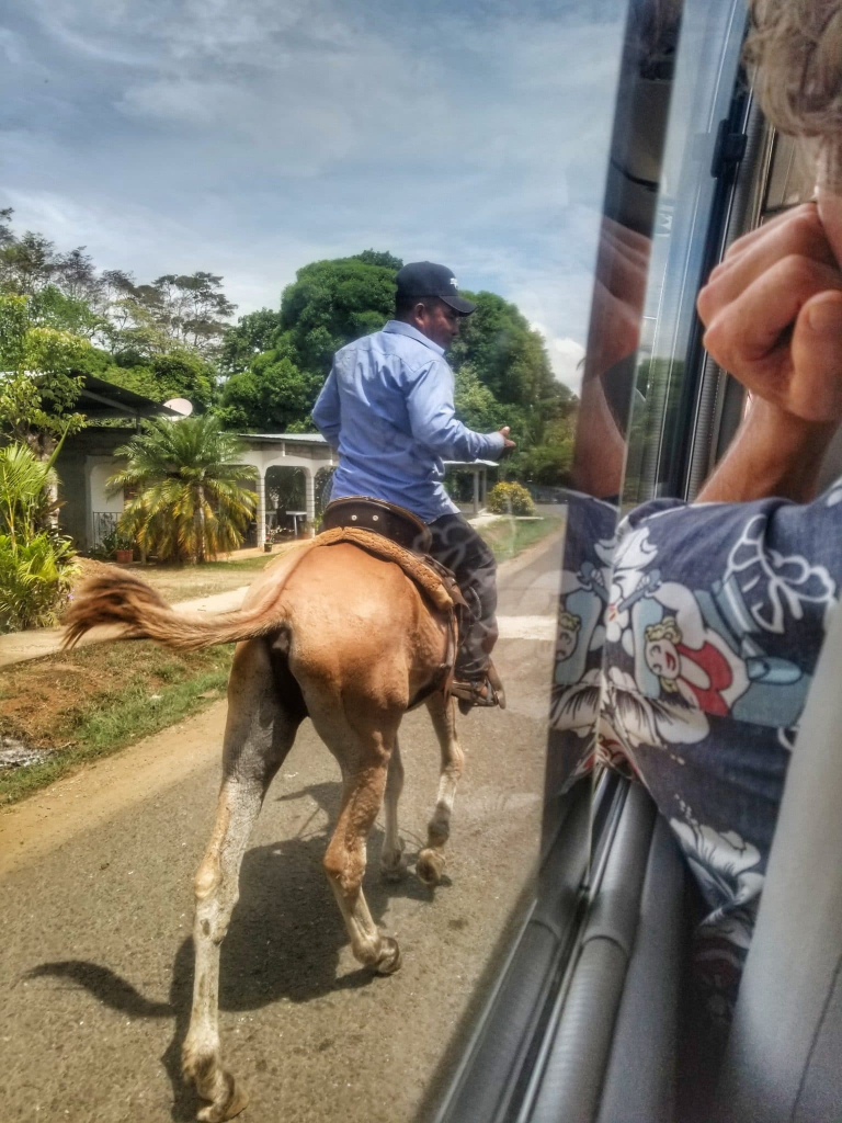 During a travel by bus in panama, we slowed down to allow the driver to have a chat with a man on a horse